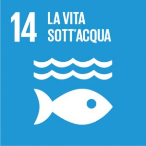 Sustainable_Development_Goals_IT_RGB-14-312x312